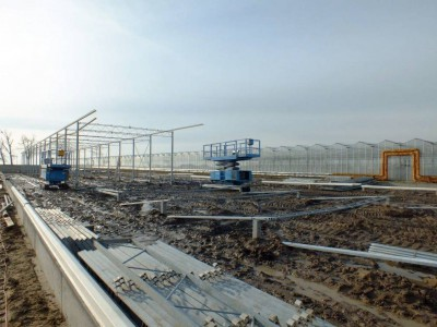 00005 Pleszew Polen kassenbouw olsthoorn greenhouse