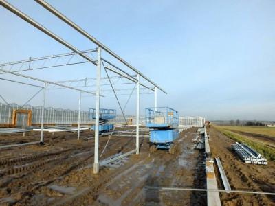 00006 Pleszew Polen kassenbouw olsthoorn greenhouse