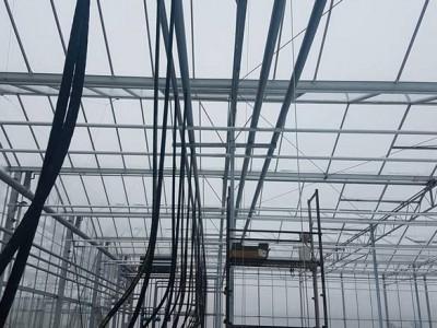 00008 Pleszew Polen kassenbouw olsthoorn greenhouse