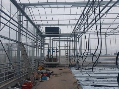 00010 Pleszew Polen kassenbouw olsthoorn greenhouse