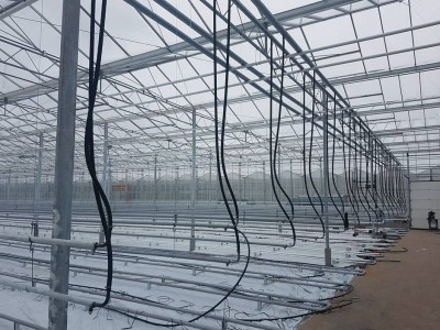 00011 Pleszew Polen kassenbouw olsthoorn greenhouse