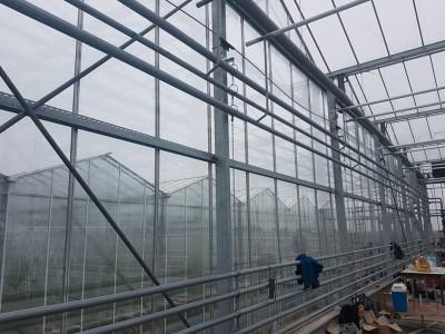 00013 Pleszew Polen kassenbouw olsthoorn greenhouse