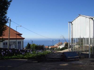 00001 Madeira Portugal Olsthoorn