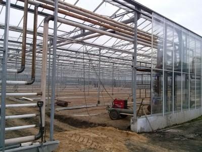 00007 Iasi Roemenie kassenbouw olsthoorn greenhouse