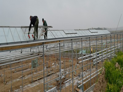 Chehov Rusland Olsthoorn Greenhouse00002