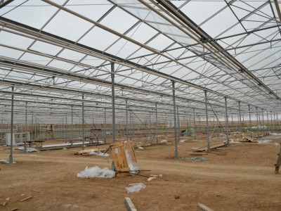 Chehov Rusland Olsthoorn Greenhouse00003