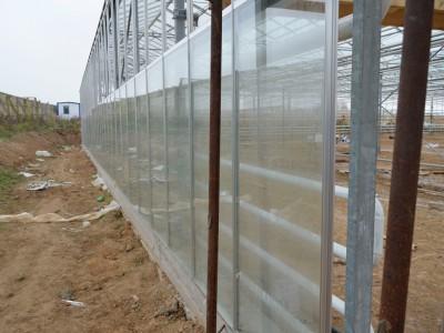 Chehov Rusland Olsthoorn Greenhouse00004