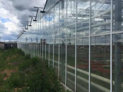 Chehov Rusland Olsthoorn Greenhouse00014