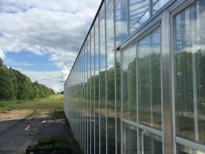 Moskou Rusland Olsthoorn Greenhouse00006