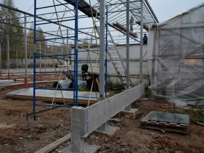 Tula Rusland Olsthoorn Greenhouse 05