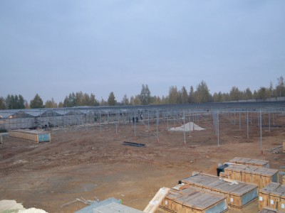 Tula Rusland Olsthoorn Greenhouse