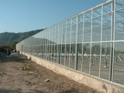00007 Izmir Turkije kassenbouw olsthoorn greenhouse
