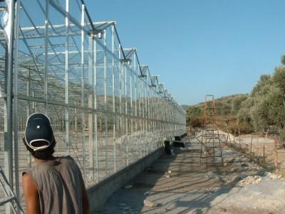 00008 Izmir Turkije kassenbouw olsthoorn greenhouse