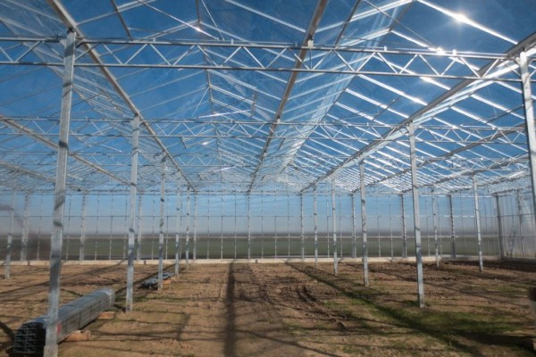 Straelen 3 Duitsland Kassenbouw Olsthoorn Greenhouse Projects 1
