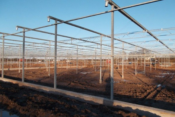 Loughborough Engeland Kassenbouw Olsthoorn Greenhouse Projects 10