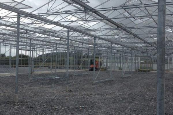Welshpool Engeland Kassenbouw Olsthoorn Greenhouse Projects 11