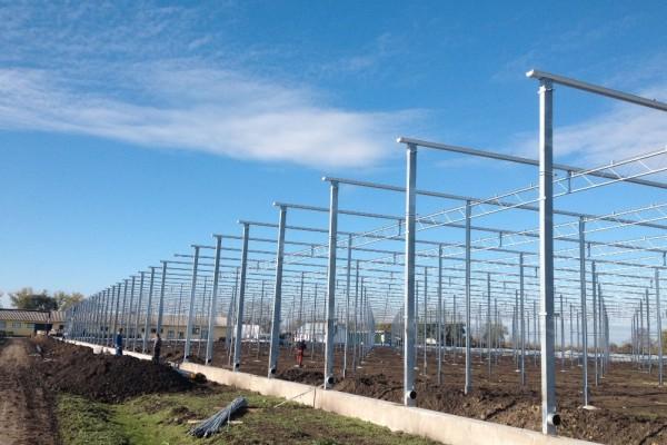 Szentes Hongerije Kassenbouw Olsthoorn Greenhouse Projects 11