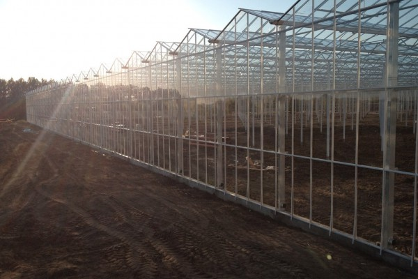 Veresegyhaz Hongarije Kassenbouw Olsthoorn Greenhouse Projects 26