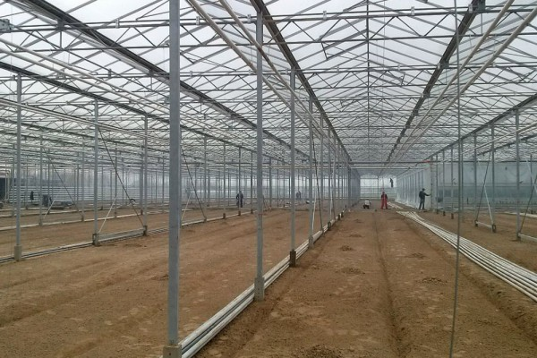 Iasi Roemenie Kassenbouw Olsthoorn Greenhouse Projects 1