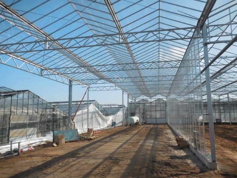 Geldern 2 Duitsland kassenbouw olsthoorn greenhouse 10