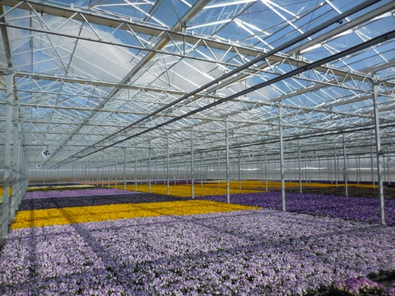 Munchen Duitsland Kassenbouw Olsthoorn Greenhouse Projects 1