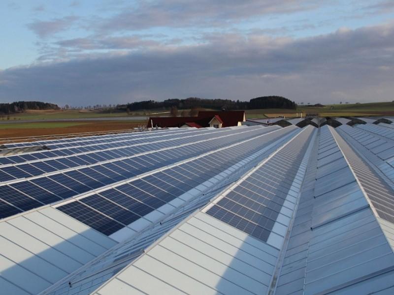 Munster Duitsland Kassenbouw Olsthoorn Greenhouse Projects 1