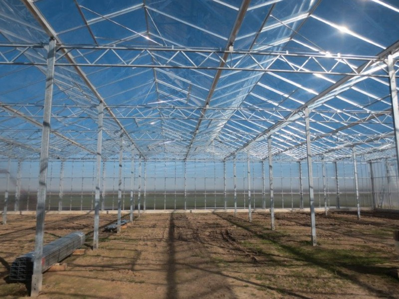 Straelen 3 Duitsland Kassenbouw Olsthoorn Greenhouse Projects 1