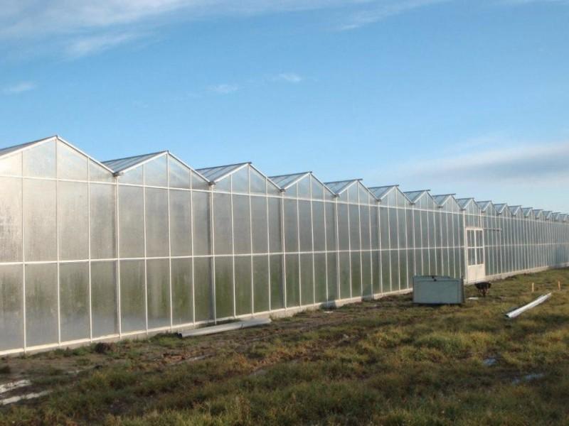 Var Frankrijk Kassenbouw Olsthoorn Greenhouse Projects 3