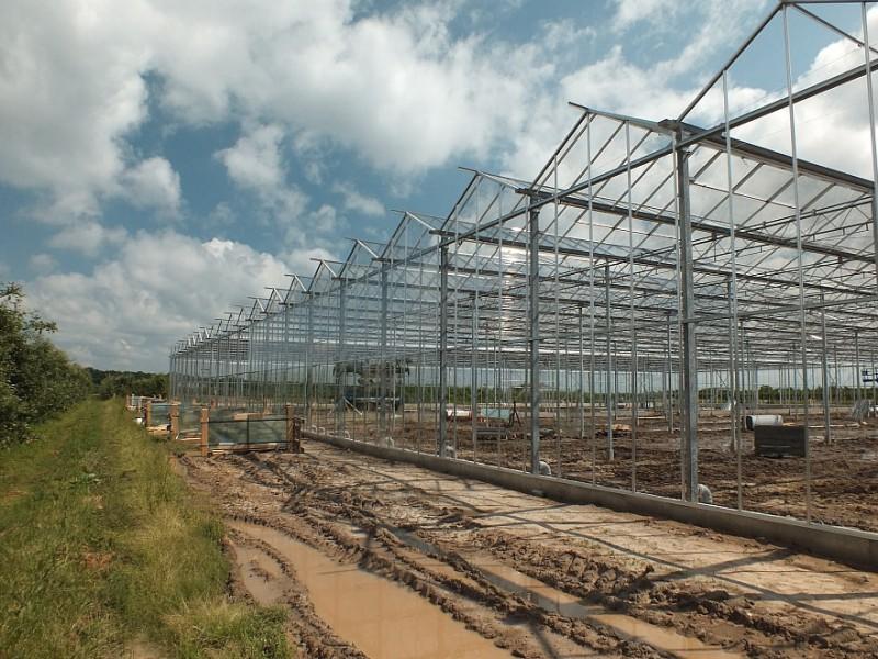 Belsk Duzy Polen kassenbouw olsthoorn greenhouse 1
