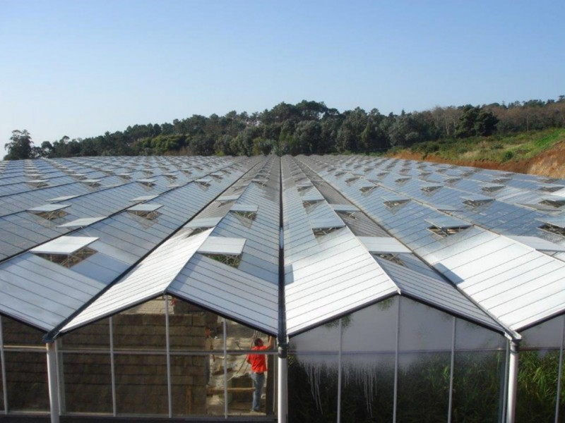 Madeira Portugal Kassenbouw Olsthoorn Greenhouse Projects 12
