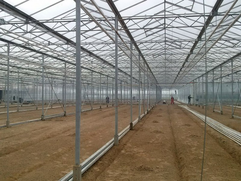 Iasi Roemenie Kassenbouw Olsthoorn Greenhouse Projects 1