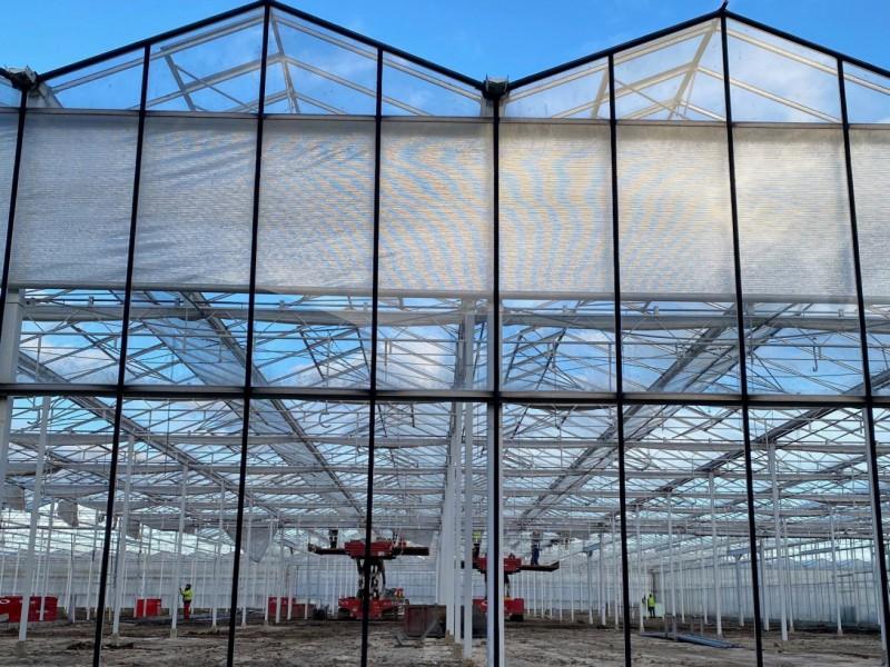 Olsthoorn sloop project Naaldwijk 01