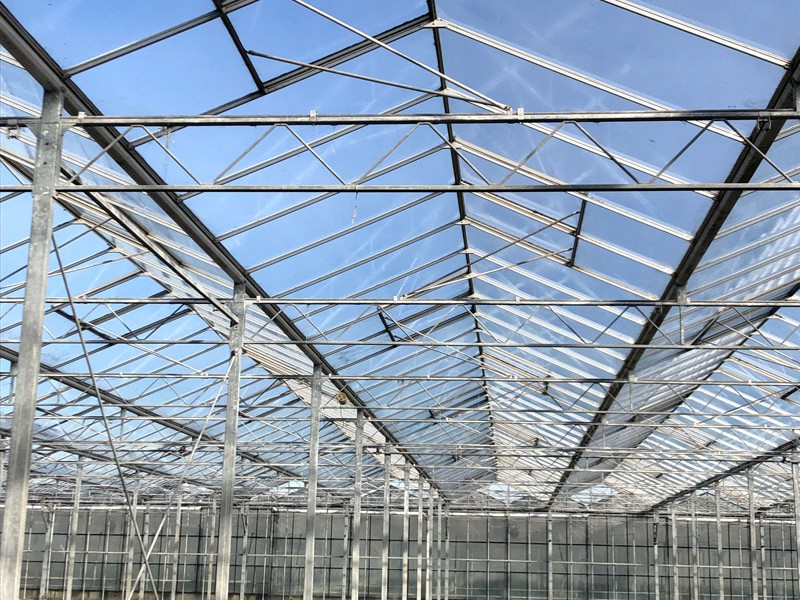 Greenhouse 2 offer olsthoorn