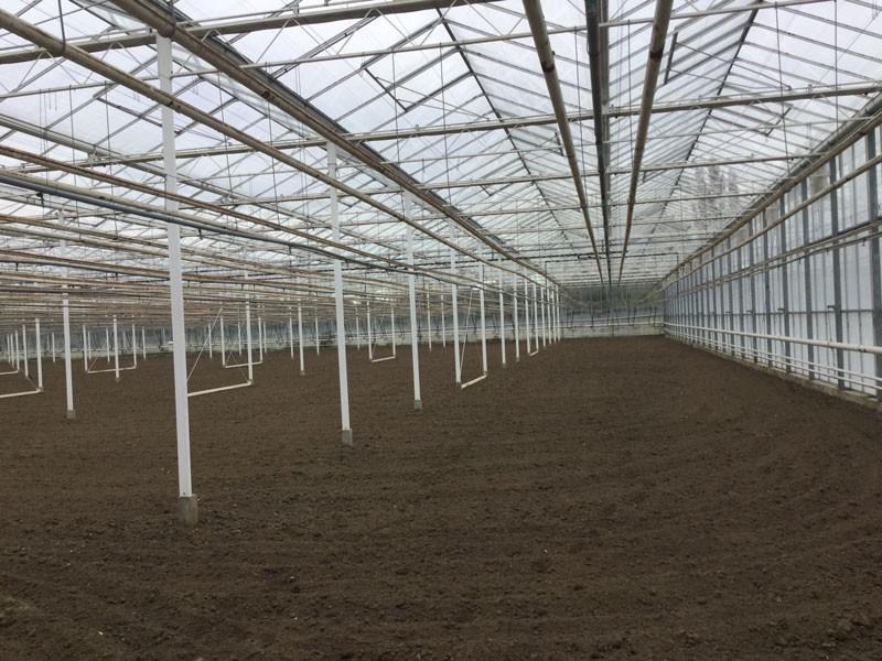 Greenhouse 3 offer olsthoorn