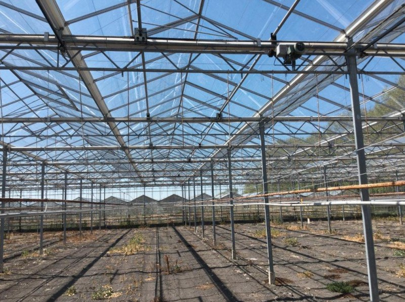Greenhouse 4000 Olsthoorn projects2