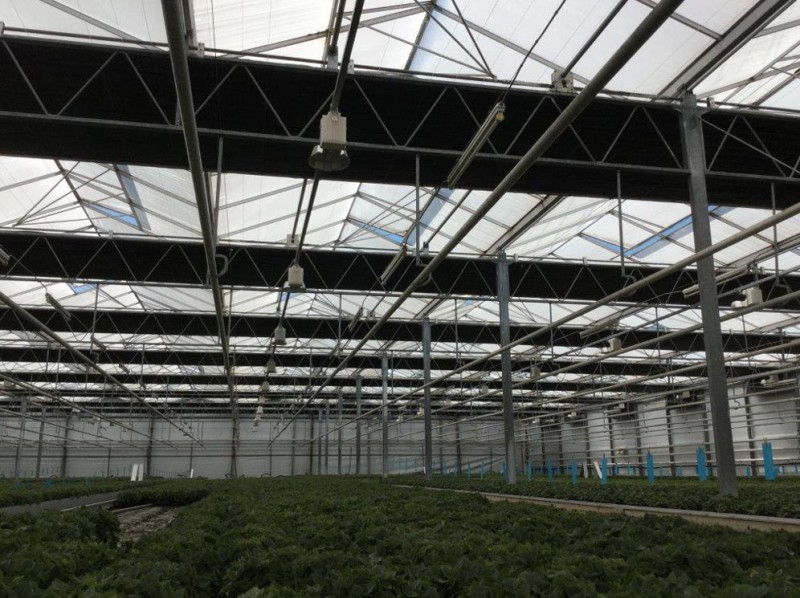 Greenhouse 5000 Olsthoorn projects5